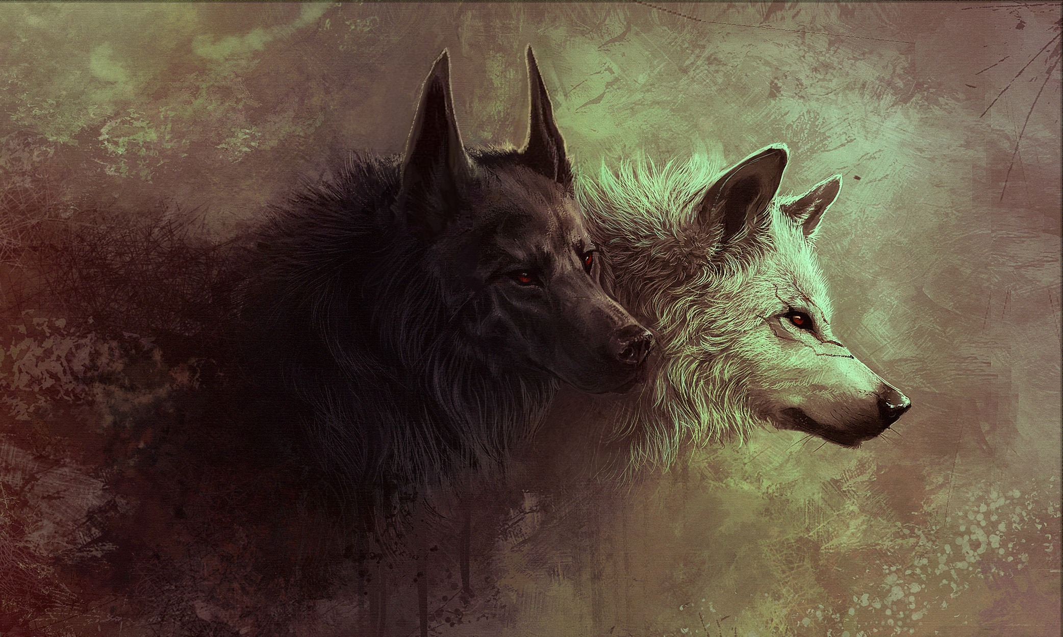 2-wolf-228233